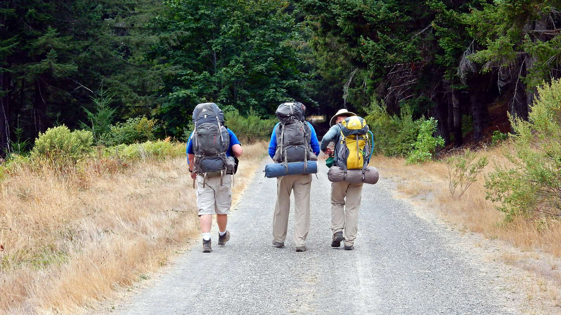 57a9aa9a613 136  Move to Backpack, Backpack to Move   The First 40 Miles  Hiking ...